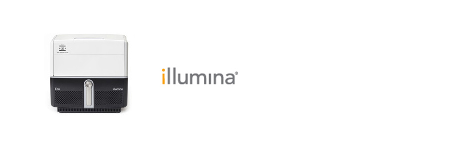 Illumina Eco Real PCR